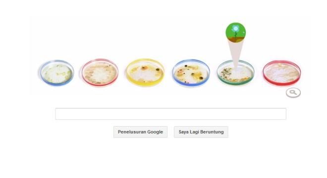 Google & Julius Richard Petri